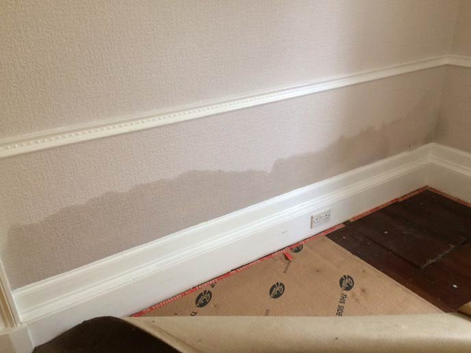 Rising Damp - Property damp proofing