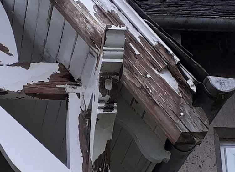 Damager timber roof elements