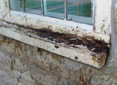 Rotten window cills
