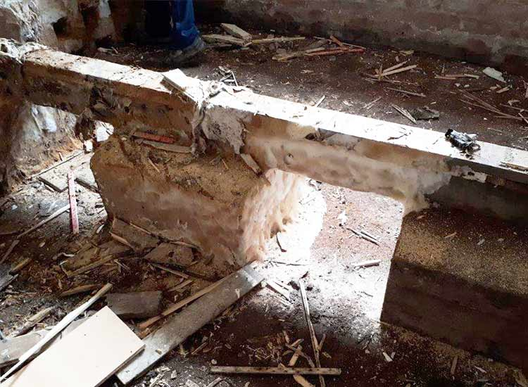 Floor joists affected by dry rot mycelium growth
