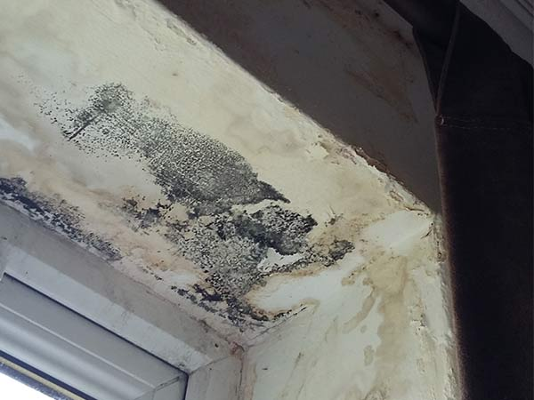 Penetrating damp marks and condensation black mould marks