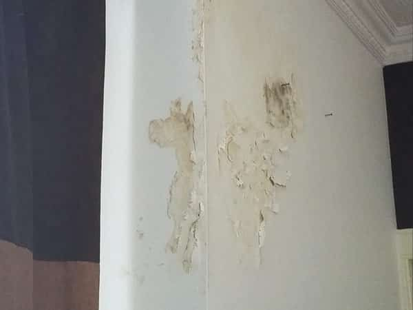Penetrating damp caused damage to the wall decoration