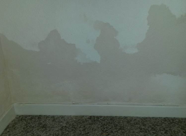Damp marks on the wall - rising damp example