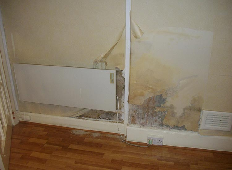 Rising Damp Caused Peeling wallpaper and damaged decoration