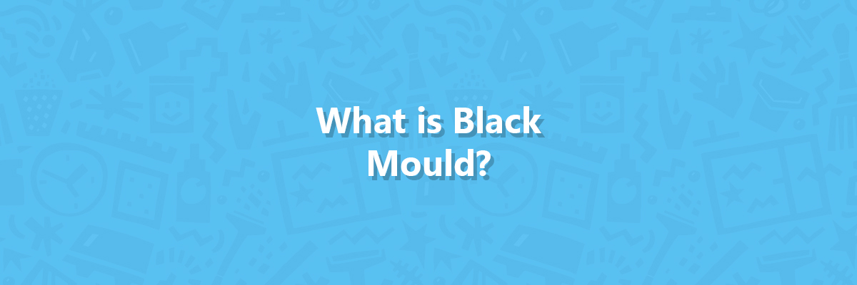 What is black mould hero image