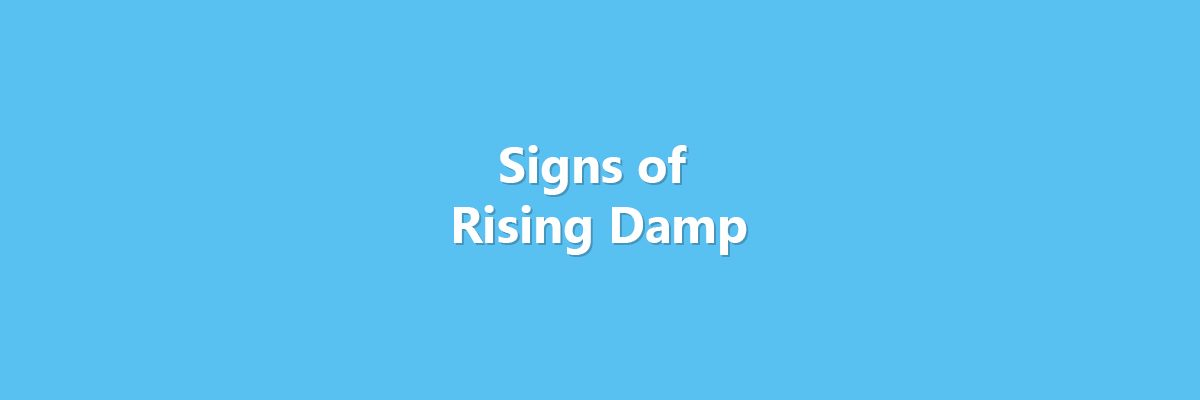 Signs of Rising Damp