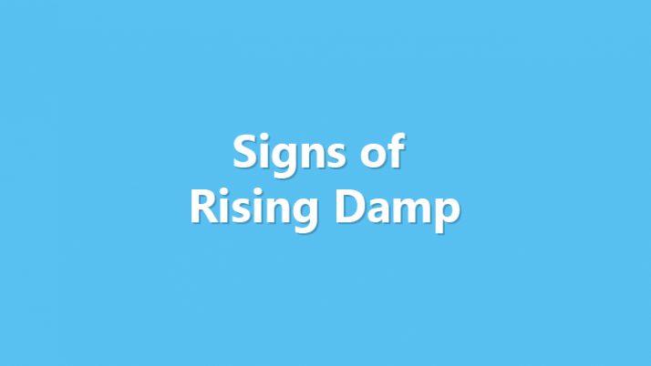 Signs of Rising Damp