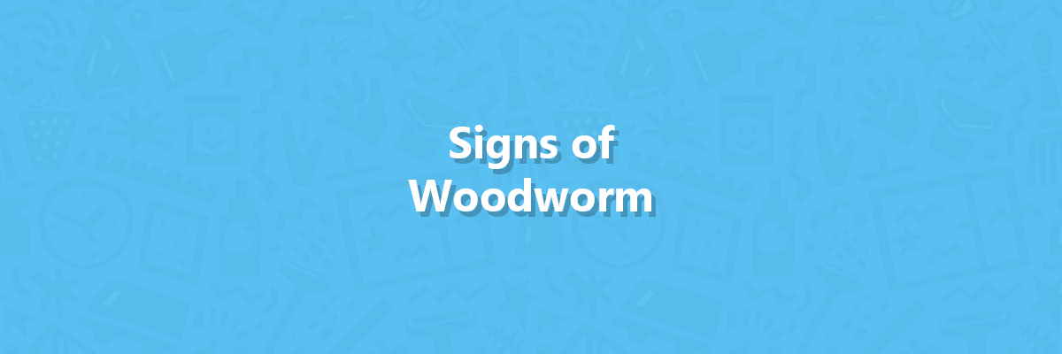 Signs of woodworm hero image