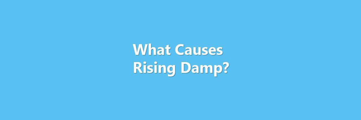 Hero image stating - what causes rising damp?