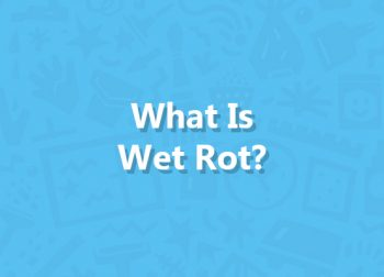 What Is Wet Rot?