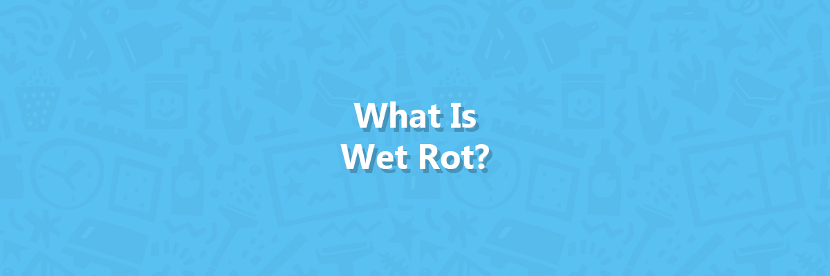 what is wet rot - thumbnail image